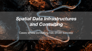 Spatial Data Infrastructures and services - consulting Spatineo