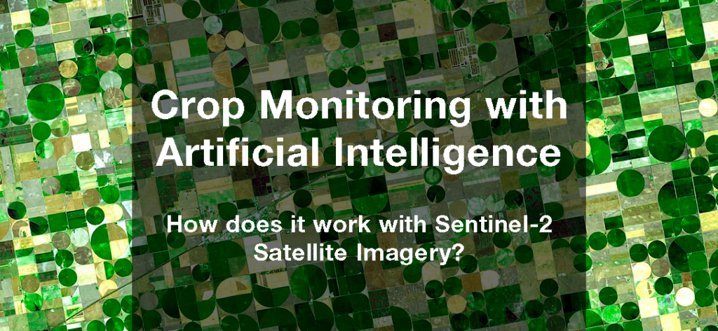 Crop Monitoring with Artificial Intelligence - Using